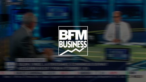 Bdm banking germany resume